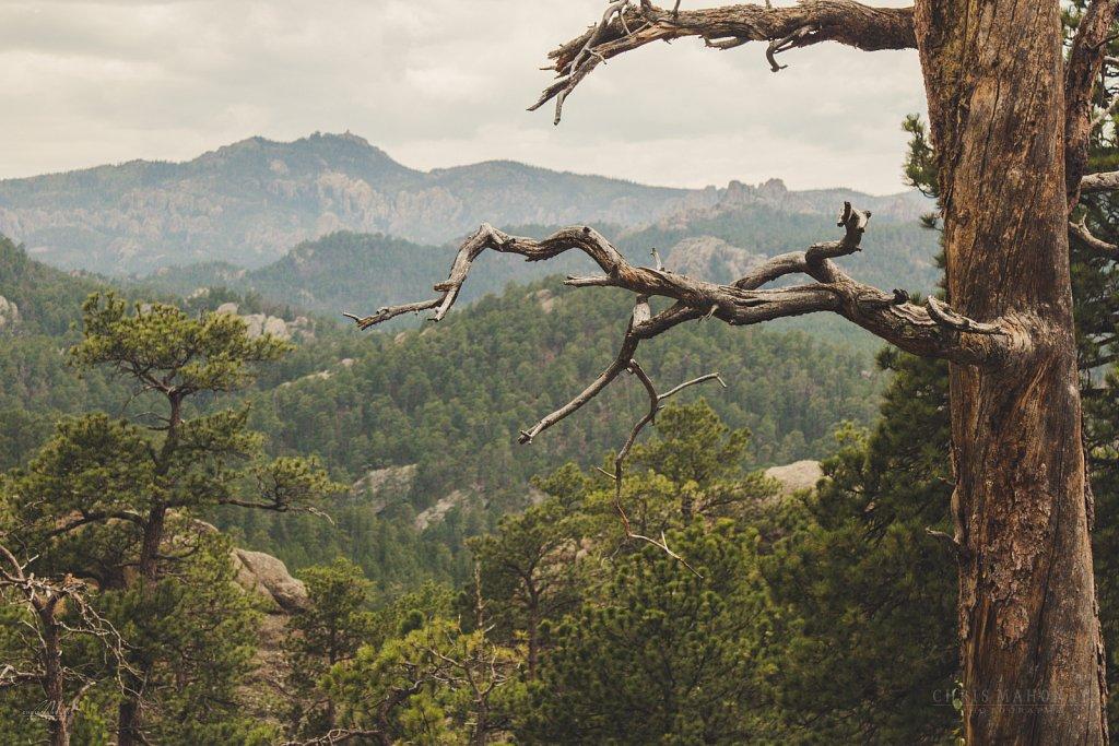 Custer Park, SD