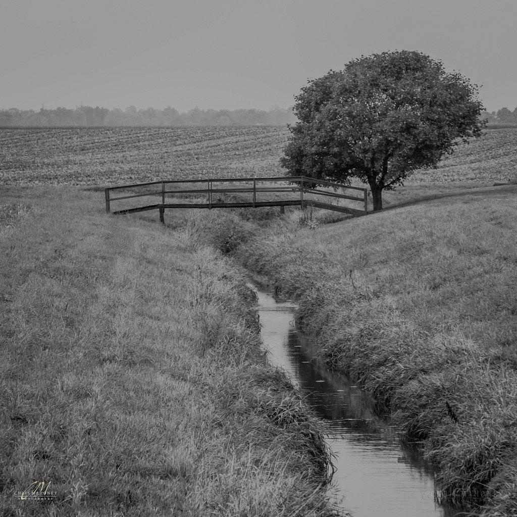 Bridge Between Fields